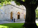 Entrance to the Siroki Brijeg Church and a  Tree